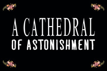 A Cathedral of Astonishment