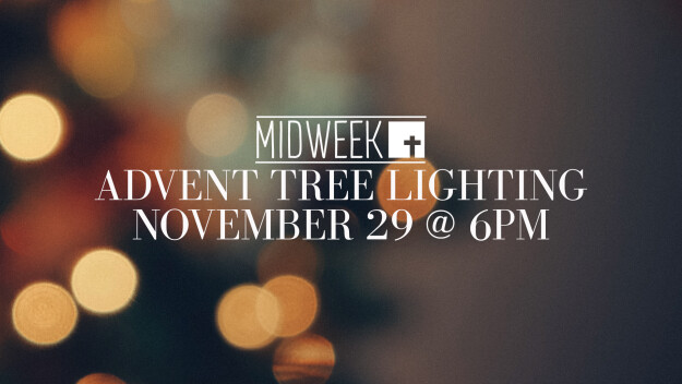 Advent Tree Lighting