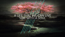 Soil With A Soul