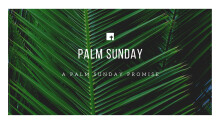 The Lenten Journey: A Palm Sunday Promise
